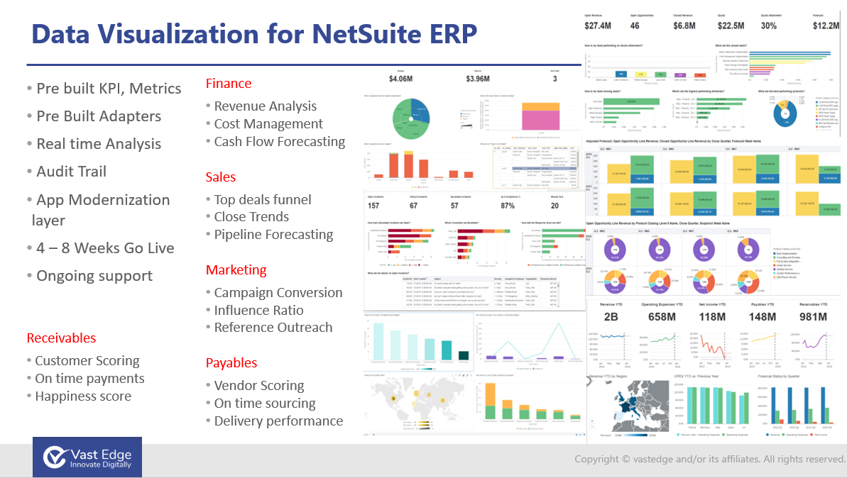 Data Visualization for NetSuite ERP